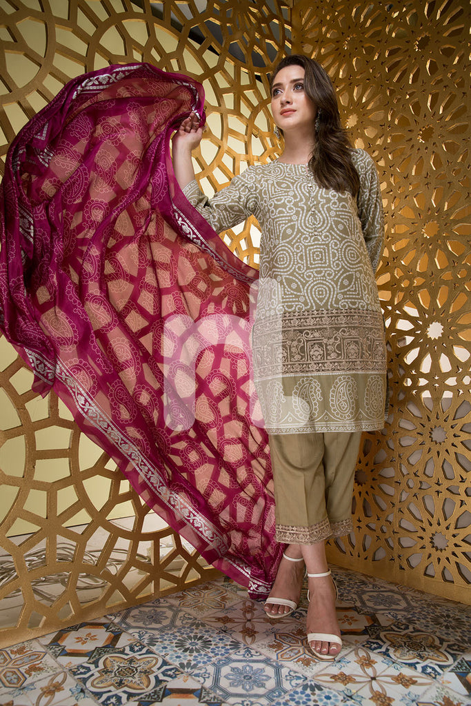 Nishat Linen Silk Chiffon Collection – Design 41701085