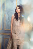 Rungrez Czarina - Surreal Luster Chiffon & Silk Collection – Silver Splendor - YourLibaas  - 2
