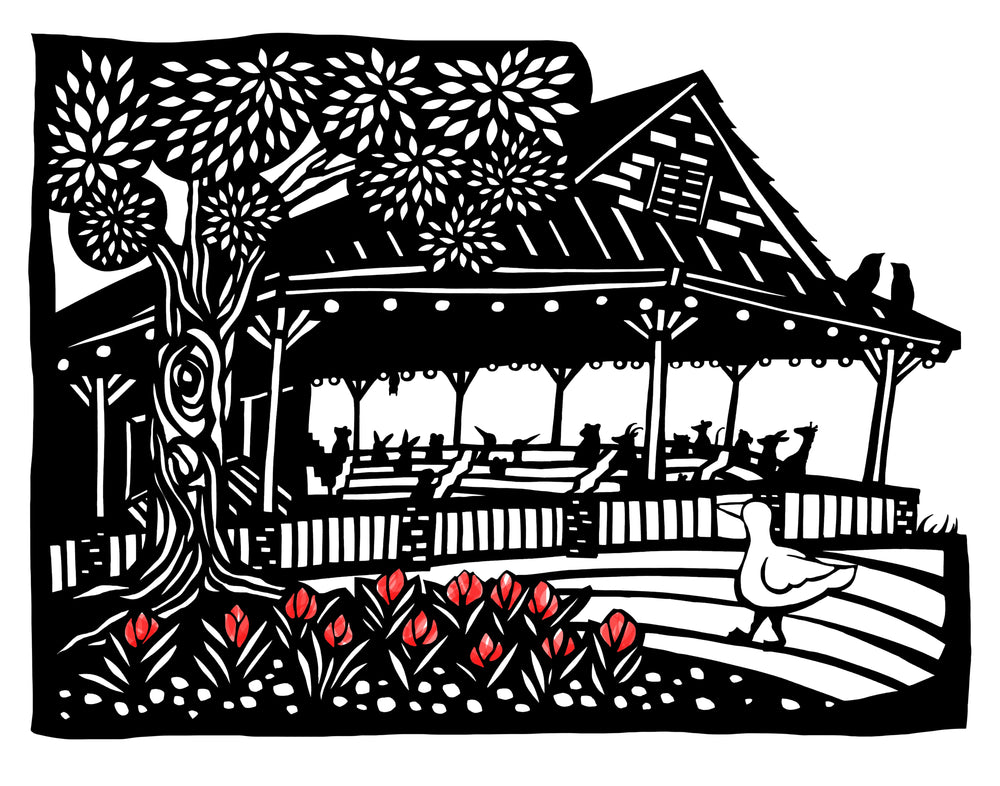 Amphitheater Chautauqua Institution, NY Card