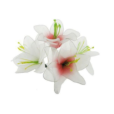 Julia's lily flower