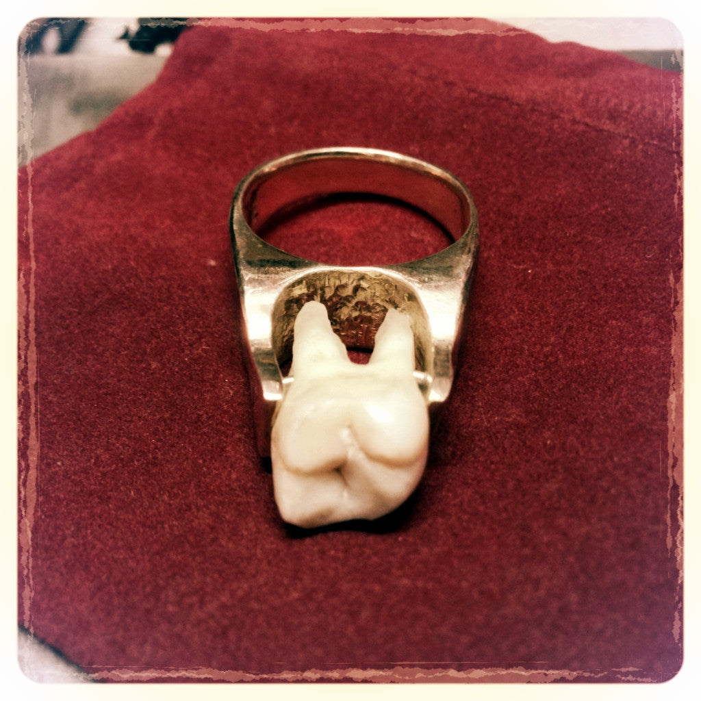 Real Human Tooth Ring in Sterling Silver