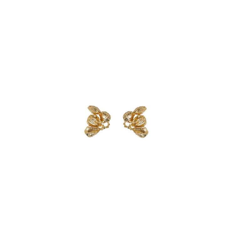 seed sm earrings gold designed by Alexandra Koumba