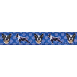 Dog Breed Collars