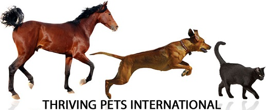 Thriving Pets International