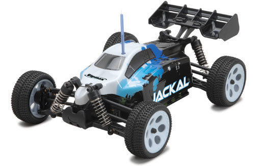 Ripmax Jackal 1/18th Brushed Electric Buggy