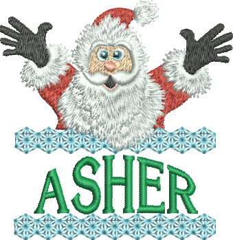 Surprise Santa Name - Asher