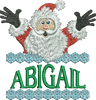 Surprise Santa Name - Abigail