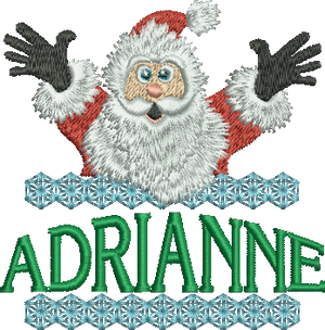 Surprise Santa Name - Adrianne