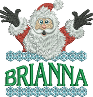 Surprise Santa Name - Brianna