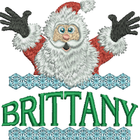 Surprise Santa Name - Brittany
