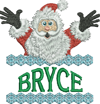 Surprise Santa Name - Bryce