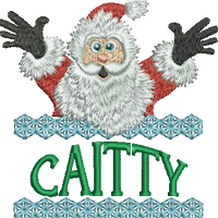 Surprise Santa Name - Caitty
