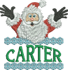 Surprise Santa Name - Carter