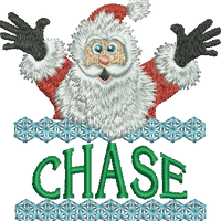 Surprise Santa Name - Chase