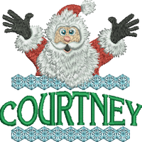 Surprise Santa Name - Courtney
