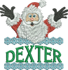 Surprise Santa Name - Dexter