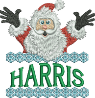 Surprise Santa Name - Harris