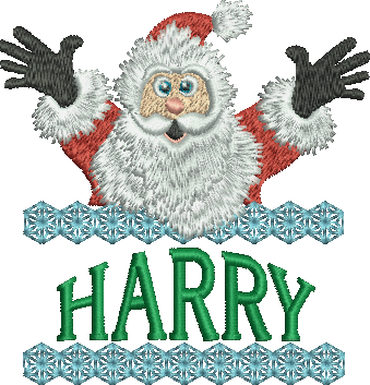 Surprise Santa Name - Harry