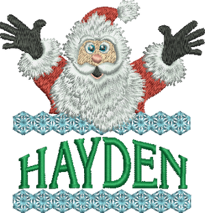 Surprise Santa Name - Hayden