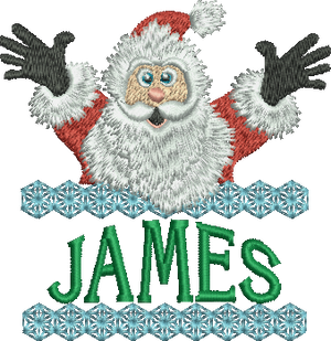 Surprise Santa Name - James