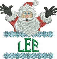 Surprise Santa Name - Lee