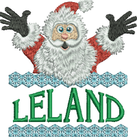 Surprise Santa Name - Leland
