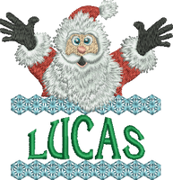 Surprise Santa Name - Lucas