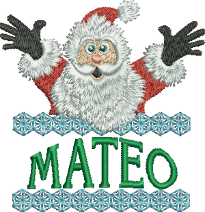 Surprise Santa Name - Mateo