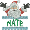Surprise Santa Name - Nate
