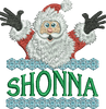 Surprise Santa Name - Shonna