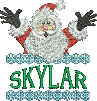 Surprise Santa Name - Skylar
