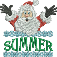 Surprise Santa Name - Summer
