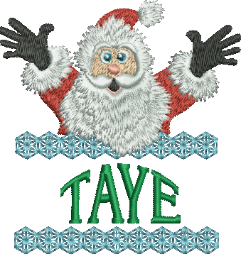 Surprise Santa Name - Taye
