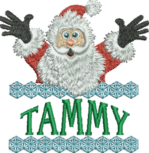 Surprise Santa Name - Tammy