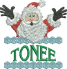 Surprise Santa Name - Tonee