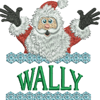 Surprise Santa Name - Wally