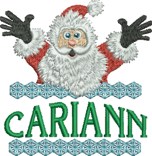 Surprise Santa Name - CariAnn