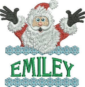 Surprise Santa Name - Emiley