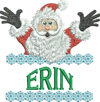 Surprise Santa Name - Erin