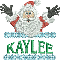 Surprise Santa Name - Kaylee