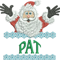 Surprise Santa Name - Pat