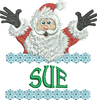 Surprise Santa Name - Sue