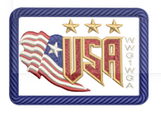 "USA ""WWG1WGA"" 3 Star Patch"