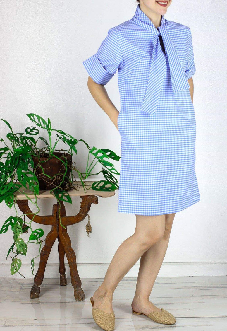 Eugene Dress in Gingham Blue