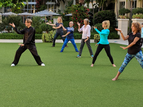 Feb 15 & 16, 2020 - Waikoloa, HI - Medical Qigong Workshop - 15 CEU