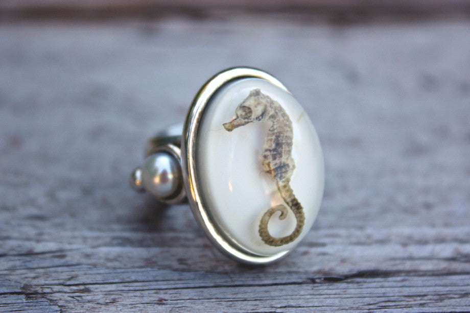 SEA HORSE RING - ref.A4044