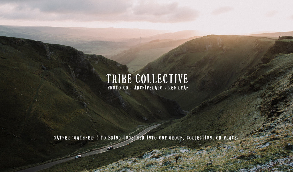 Tribe Collective - Image by Liam Rimmington