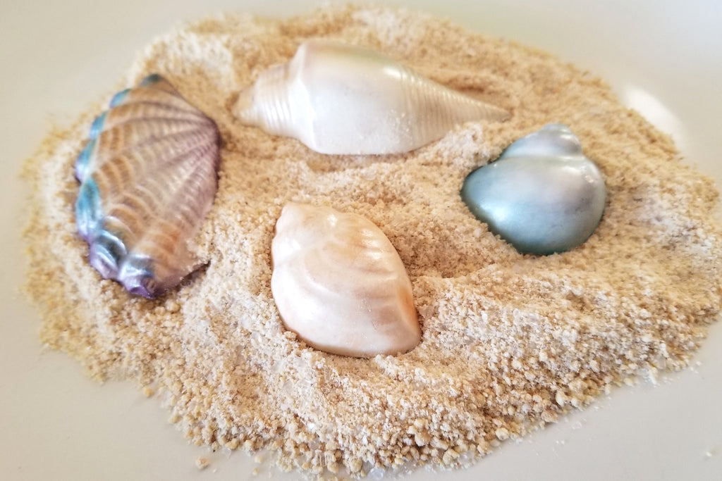 Gorgeous chocolate seashells in edible sand