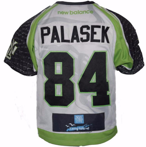 2017 Tommy Palasek #84 Game-Worn Jersey