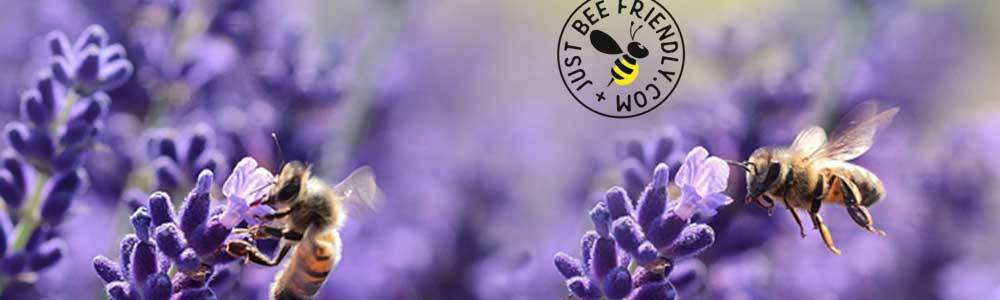 Bee Friendly Charms